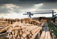 """Инжиниринговая компания """"2К"""" выиграла конкурс на разработку концепции древообрабатывающего производства"""